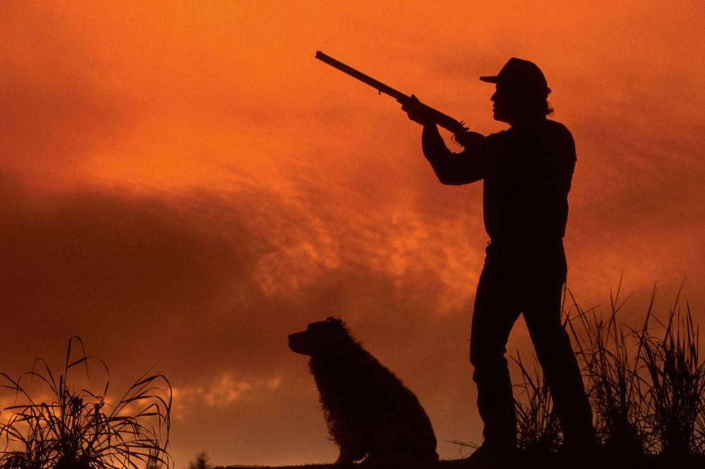 Картинка с охотником